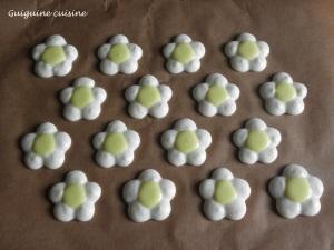 macarons fleurs2