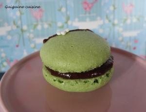 macaron menthe chocolat